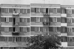 minsk-1980-zm-15