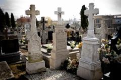cmentarz nagrobki tpmm-29